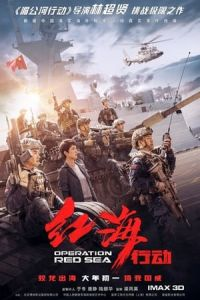 Operation Red Sea (Hong hai xing dong) (2018)