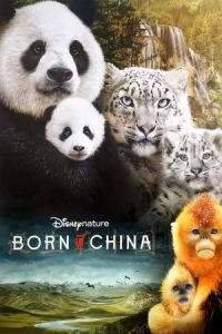 Nonton Born in China (2016) — HD BluRay